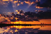 アメリカ合衆国 フロリダ州 エバーグレーズ国立公園