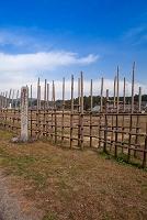 愛知県 新城市 設楽原決戦場の馬防柵