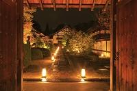 京都府 紅葉の雲龍院