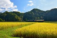 秋田県 秋田内陸縦貫鉄道