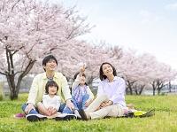お花見しながらピクニックを楽しむ日本人家族
