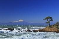 神奈川県 横須賀市 秋谷海岸からの富士山