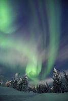 フィンランド サーリセルカのオーロラ