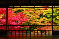 京都府 京都市 瑠璃光院 紅葉