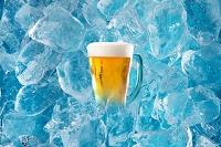 氷バックに冷えたビール 夏の食