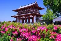 奈良県 平城宮跡