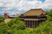 京都府 清水寺の本堂と三重塔