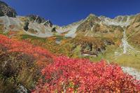 長野県 紅葉の涸沢と穂高連峰