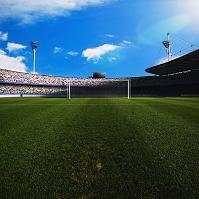 芝生とスタジアム