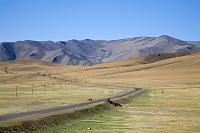 モンゴル ウランバートル テレルジ国立公園