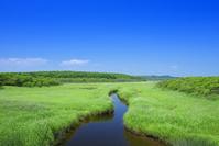 北海道 霧多布岬湿原と小川