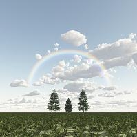 三本の木と虹