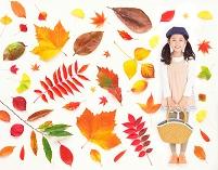 秋のお出かけイメージ