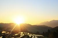 滋賀県 早朝の畑の棚田と朝日