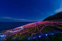 石川県 輪島市 千枚田 ライトアップ