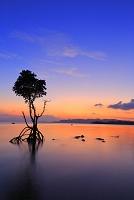 沖縄県 名蔵湾の夕景