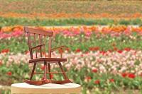 花畑と木の椅子