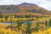 秋のトゥームストーン準州立公園
