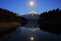 静岡県 田貫湖から見る薄暮の富士山と昇る月