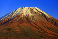 山梨県 富士ヶ嶺より夕日に染まる富士山