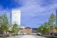 東京都 東京駅丸の内駅舎と高層ビル
