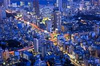 東京都 一ノ橋ジャンクションと高層ビルの夜景
