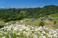長野県 山村集落と北アルプス