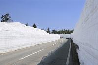 青森県 八甲田山の雪の回廊