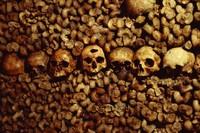 フランス 地下墓地