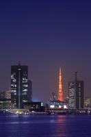 東京都 晴海客船ターミナルから芝浦方面の夜景