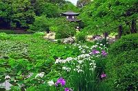 京都府 勧修寺