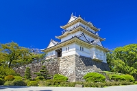 神奈川県 小田原城の天守閣