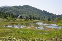新潟県 火打山・高谷池湿原