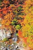 栃木県 日光市・栗山 紅葉の奥鬼怒川渓谷