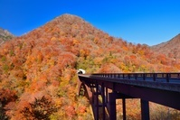 福島県 甲子峠の紅葉と甲子大橋