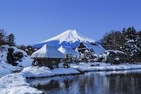 山梨県 忍野村から望む富士山 榛の木林資料館