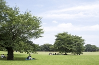 東京都 立川市 昭和記念公園