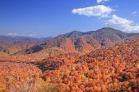 北海道 賀老高原の紅葉