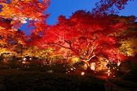 京都府 宝厳院