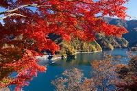東京都 秋の奥多摩湖