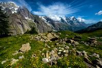 イタリア 東側からのモンブラン山群と花畑