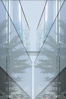 建物内部と樹木のコラージュ