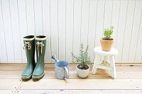 ブーツとジョウロと観葉植物