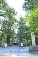 栃木県 日光東照宮 石鳥居と表門