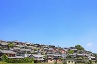 新旧の建物が混在する住宅街