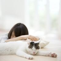 眠る猫と日本人女性