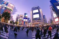 東京都 渋谷のスクランブル交差点