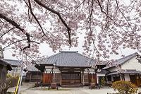 愛知県 光明寺