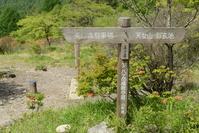 山梨県 清里高原 美し森 道標と登山道