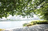 東京都 河岸公園